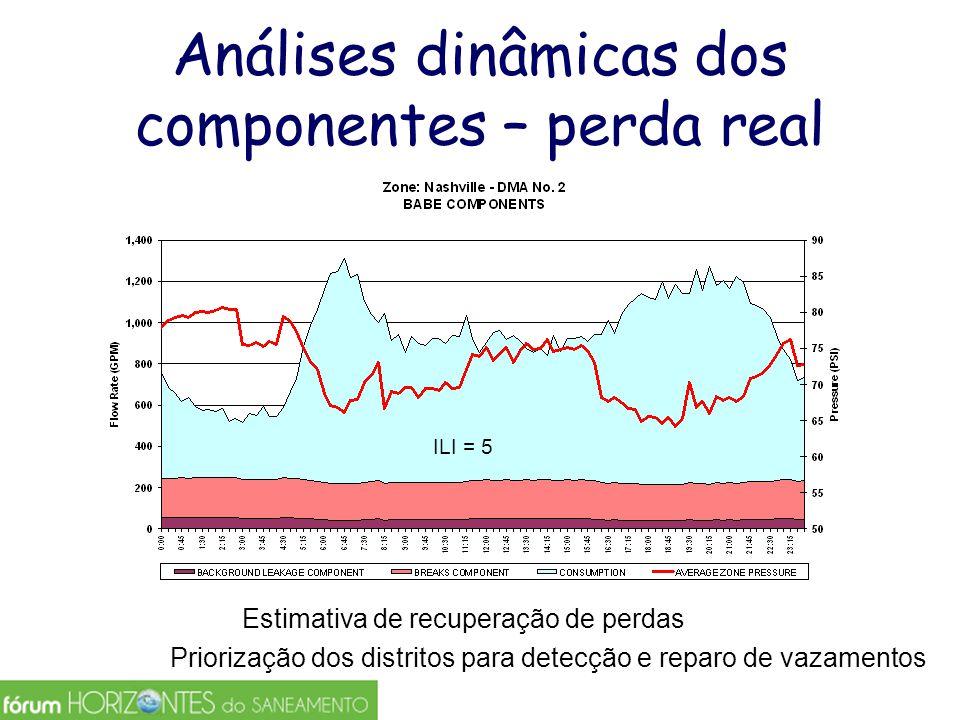 Análises dinâmicas dos componentes – perda real