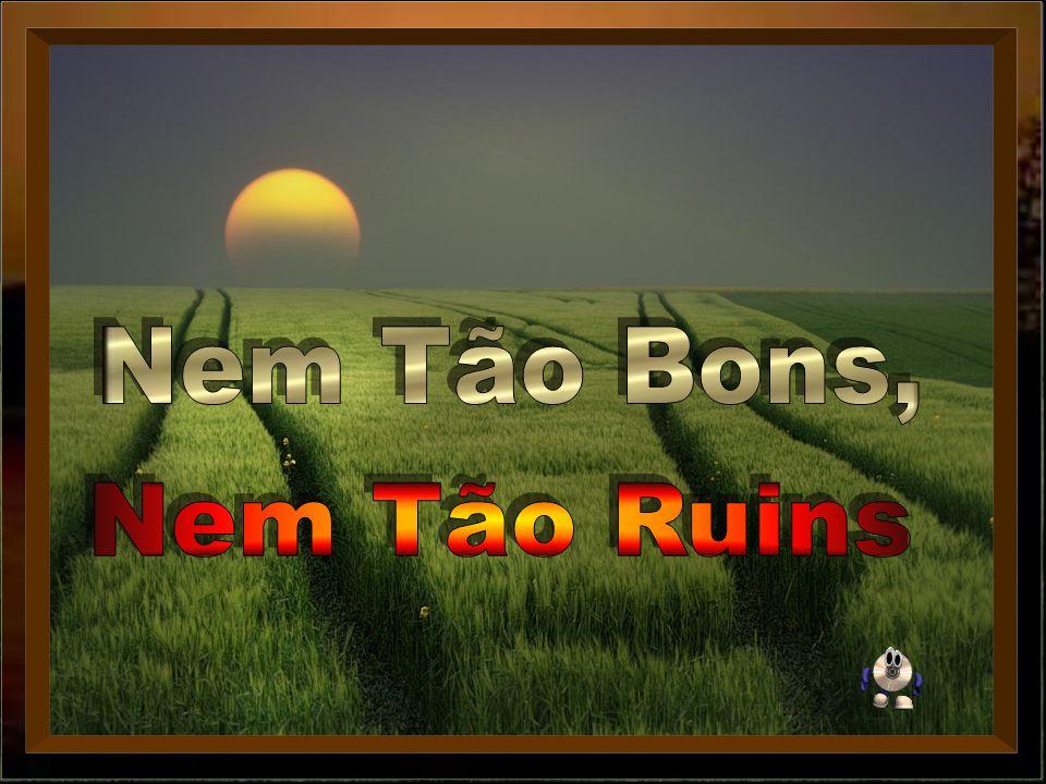 Nem Tão Bons, Nem Tão Ruins