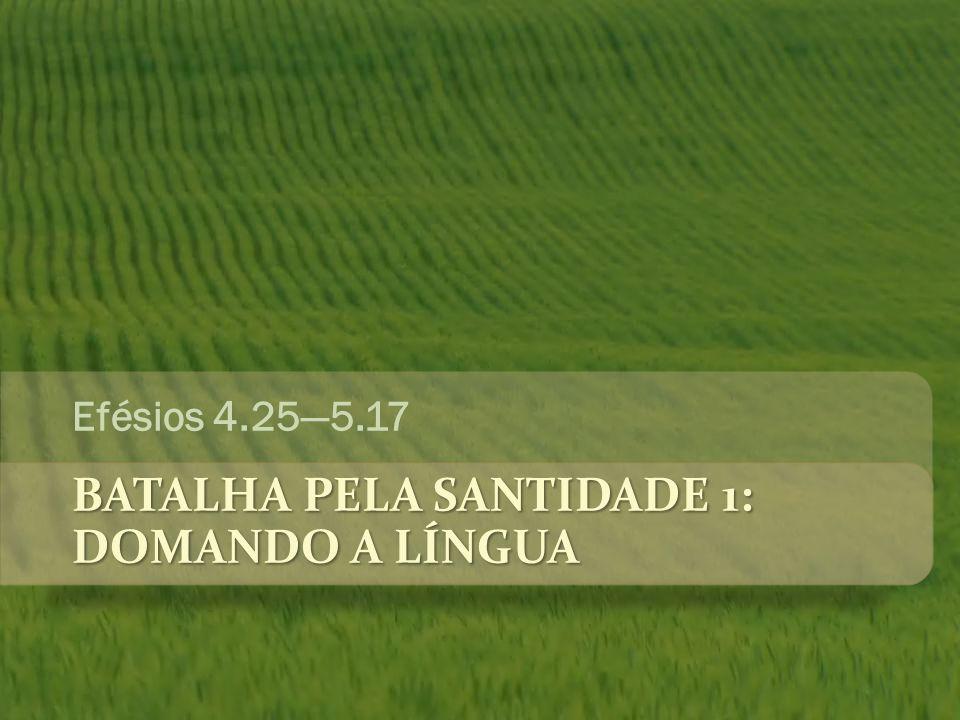 BATALHA PELA SANTIDADE 1: DOMANDO A LÍNGUA