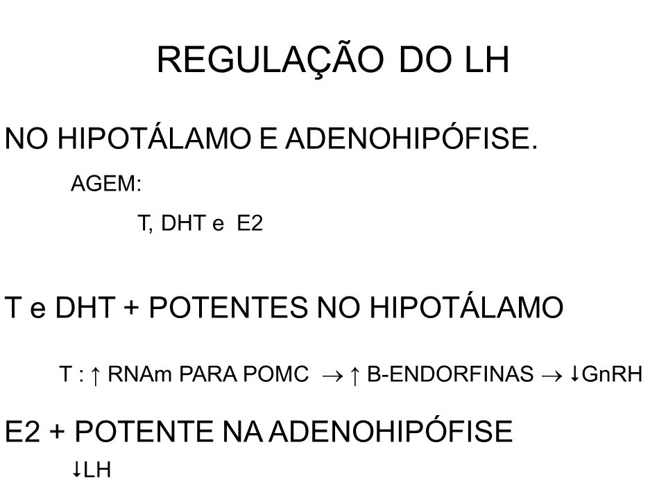 REGULAÇÃO DO LH NO HIPOTÁLAMO E ADENOHIPÓFISE.