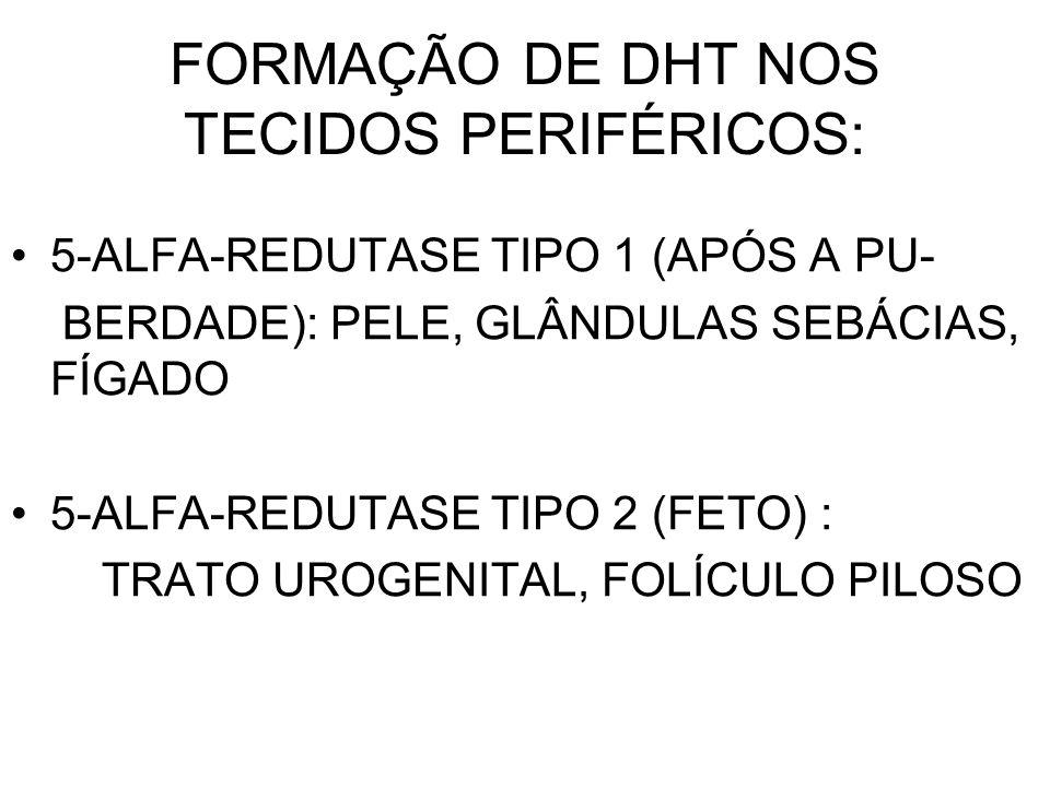 FORMAÇÃO DE DHT NOS TECIDOS PERIFÉRICOS: