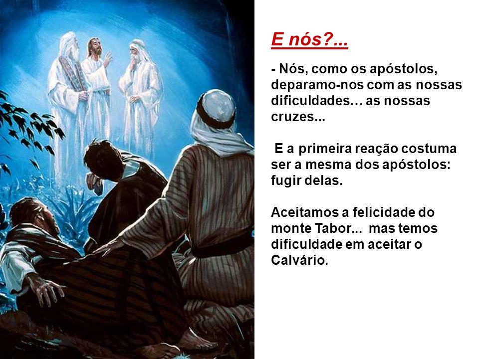 E nós ... - Nós, como os apóstolos, deparamo-nos com as nossas dificuldades… as nossas cruzes...