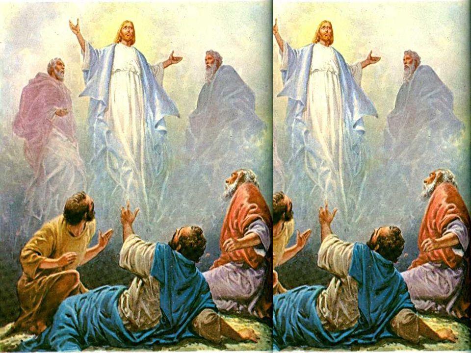 Neste contato pessoal com Deus, perto do Céu, aconteceu a transfiguração, que fez brilhar no rosto de Jesus, a glória de Deus.