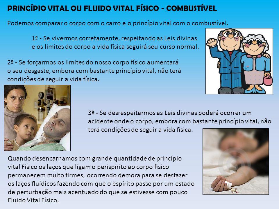 PRINCÍPIO VITAL OU FLUIDO VITAL FÍSICO - COMBUSTÍVEL