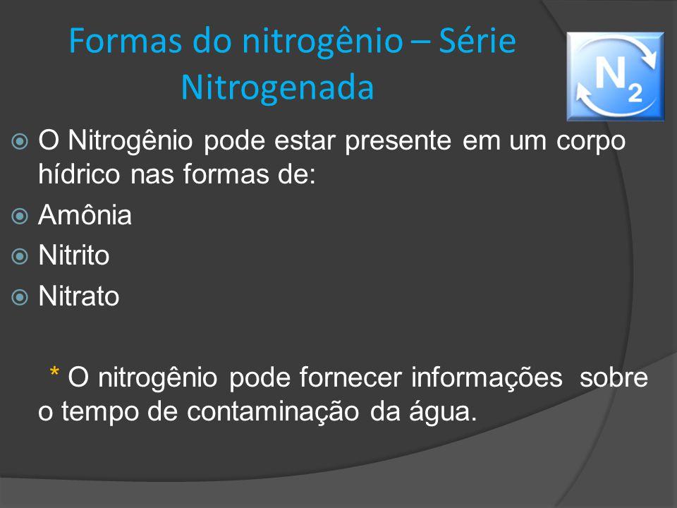 Formas do nitrogênio – Série Nitrogenada
