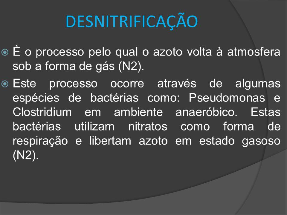 DESNITRIFICAÇÃO È o processo pelo qual o azoto volta à atmosfera sob a forma de gás (N2).