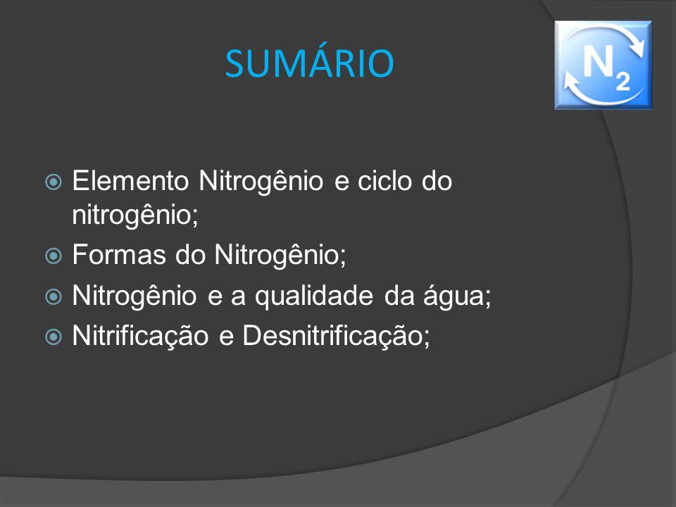 SUMÁRIO Elemento Nitrogênio e ciclo do nitrogênio;
