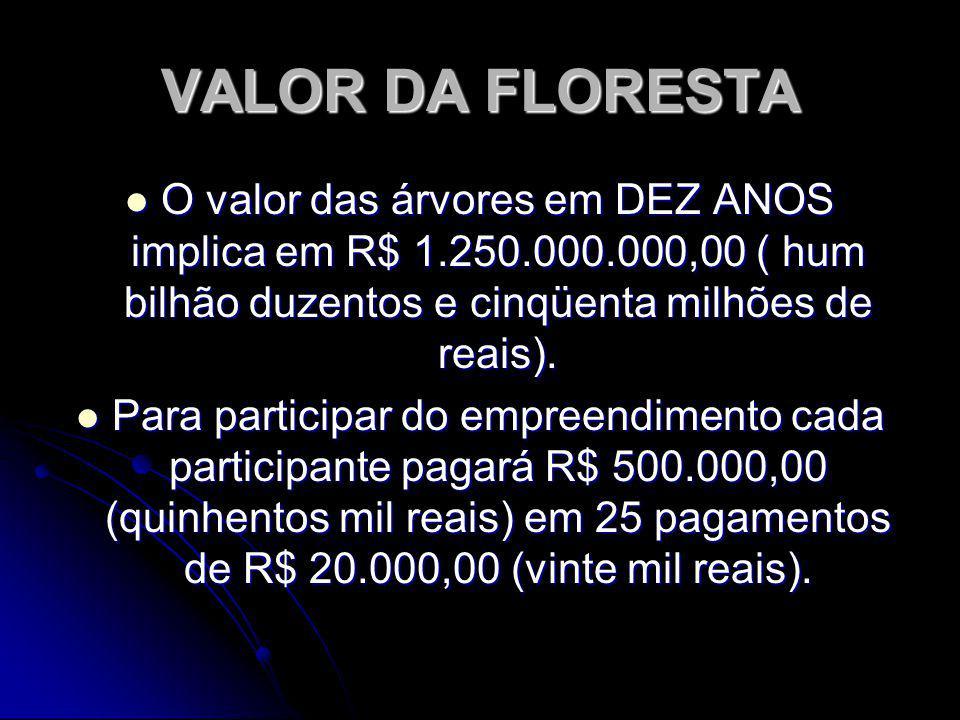 VALOR DA FLORESTA O valor das árvores em DEZ ANOS implica em R$ 1.250.000.000,00 ( hum bilhão duzentos e cinqüenta milhões de reais).