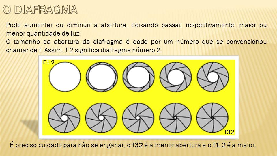 O DIAFRAGMA Pode aumentar ou diminuir a abertura, deixando passar, respectivamente, maior ou menor quantidade de luz.