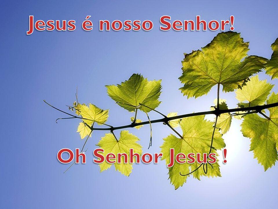 Jesus é nosso Senhor! Oh Senhor Jesus !