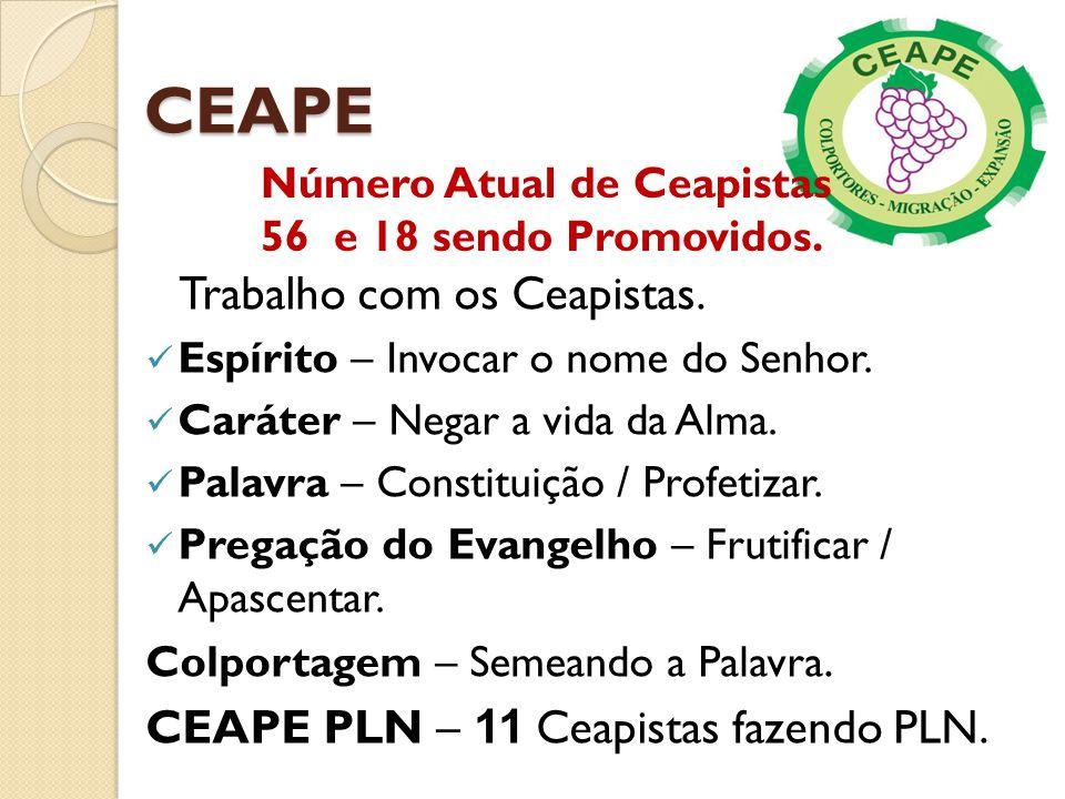 CEAPE Trabalho com os Ceapistas. CEAPE PLN – 11 Ceapistas fazendo PLN.