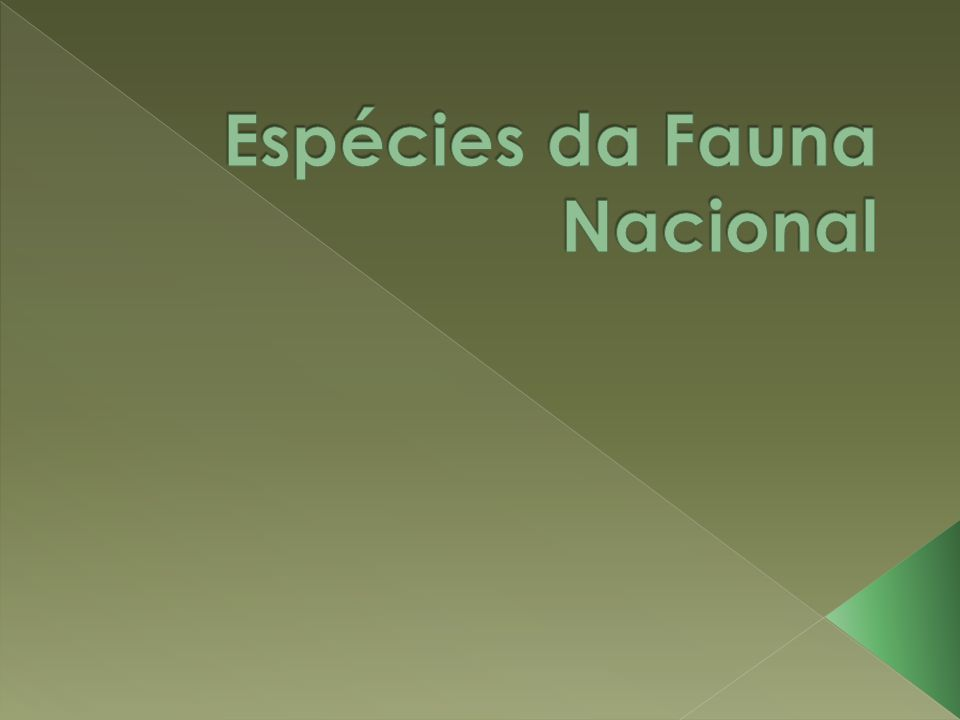 Espécies da Fauna Nacional