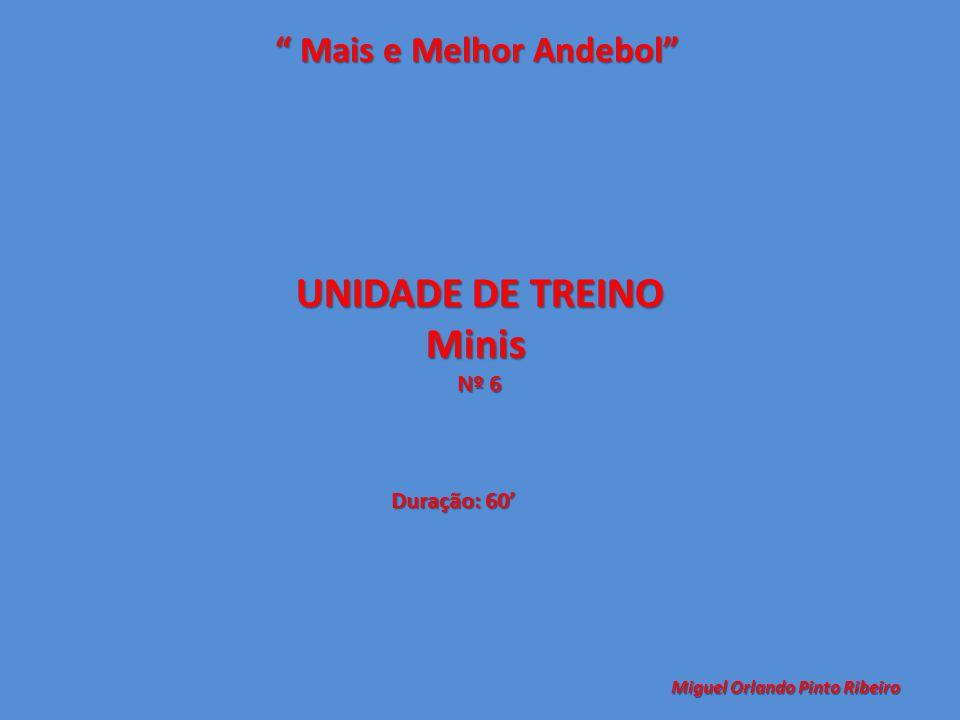 UNIDADE DE TREINO Minis