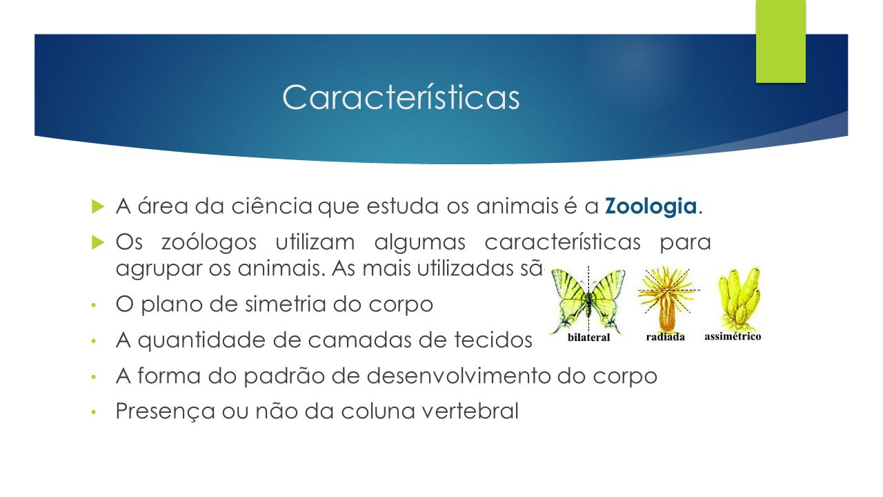 Características A área da ciência que estuda os animais é a Zoologia.
