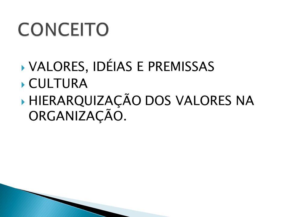 CONCEITO VALORES, IDÉIAS E PREMISSAS CULTURA