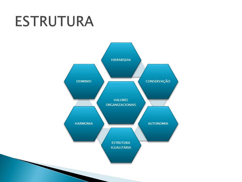 ESTRUTURA VALORES ORGANIZACIONAIS HIERARQUIA CONSERVAÇÃO AUTONOMIA