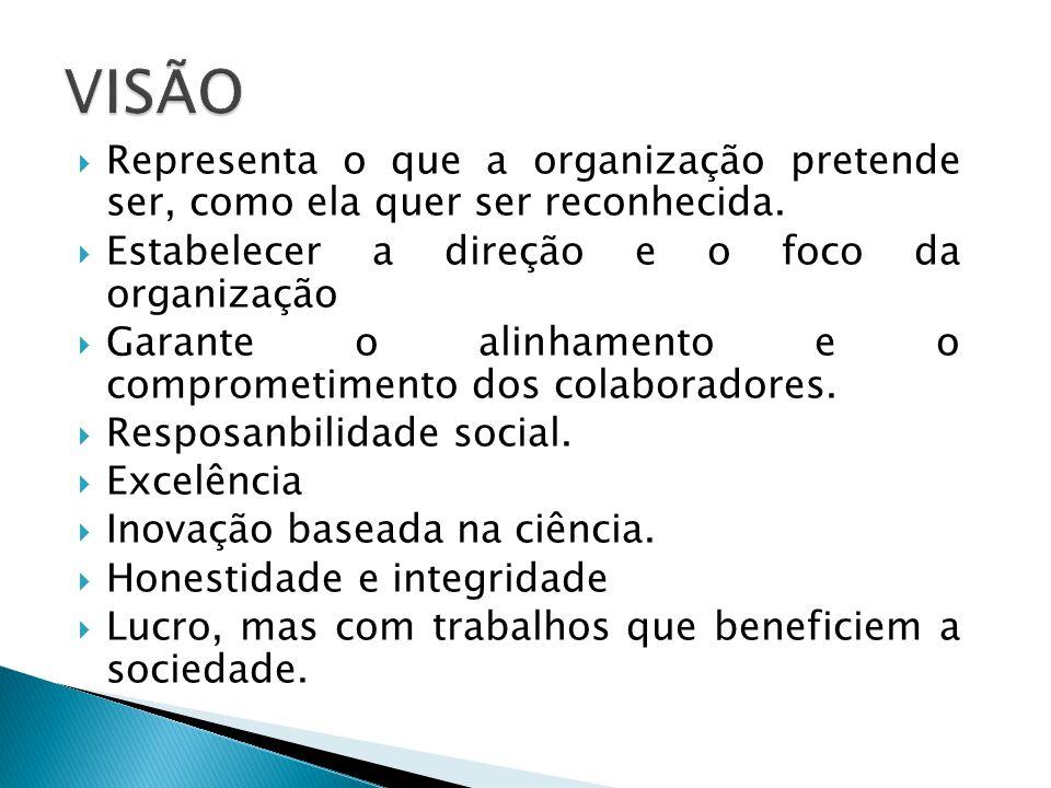 VISÃO Representa o que a organização pretende ser, como ela quer ser reconhecida. Estabelecer a direção e o foco da organização.