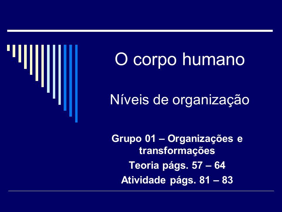 O corpo humano Níveis de organização