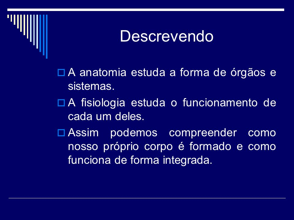 Descrevendo A anatomia estuda a forma de órgãos e sistemas.