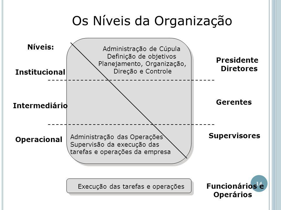 Os Níveis da Organização