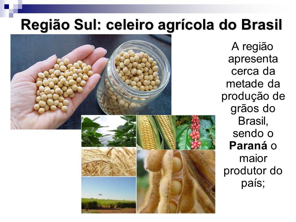 Região Sul: celeiro agrícola do Brasil