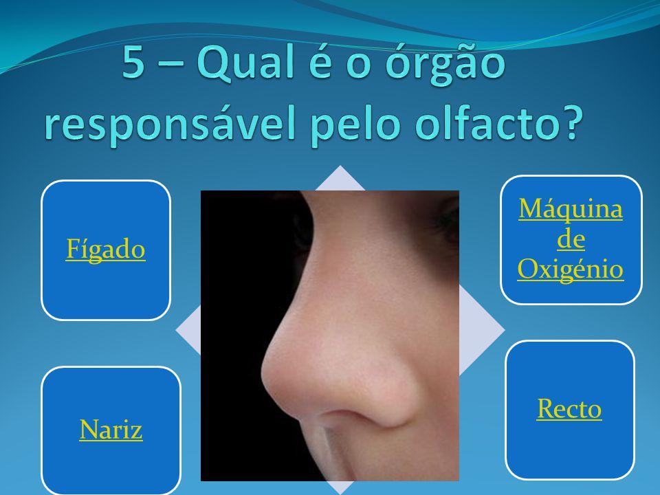 5 – Qual é o órgão responsável pelo olfacto