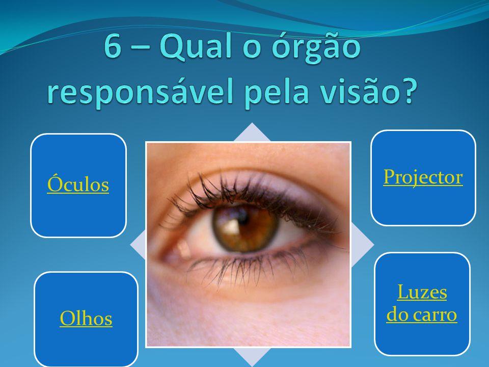6 – Qual o órgão responsável pela visão