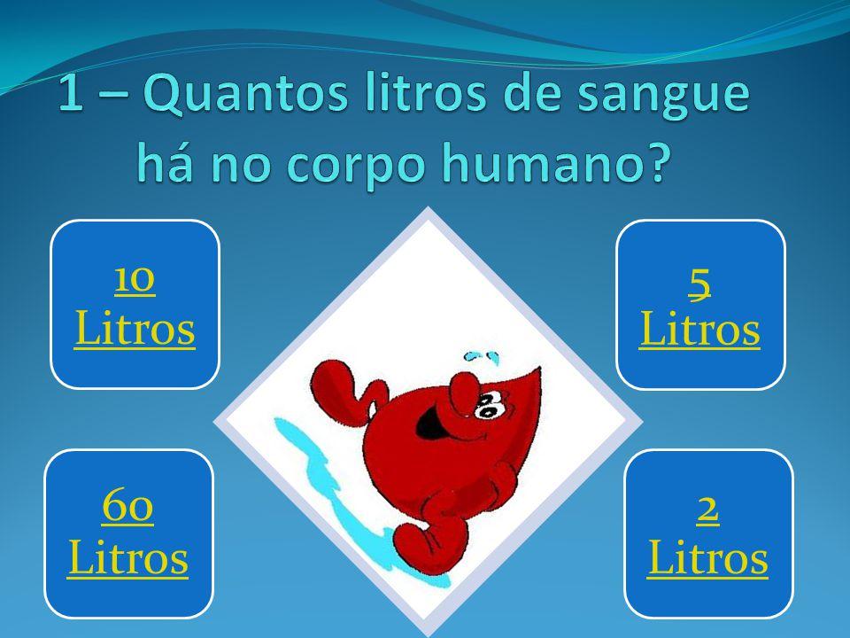1 – Quantos litros de sangue há no corpo humano
