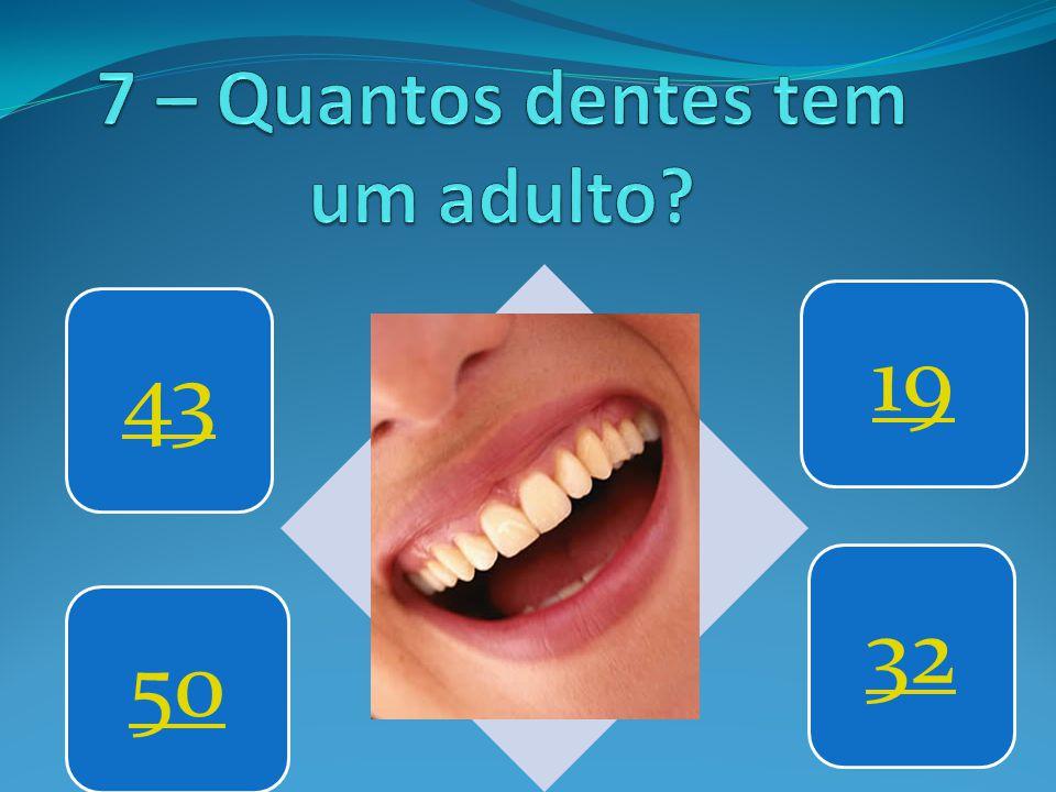 7 – Quantos dentes tem um adulto