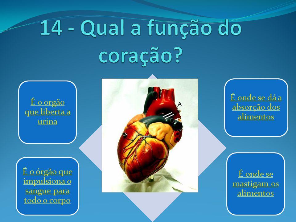 14 - Qual a função do coração