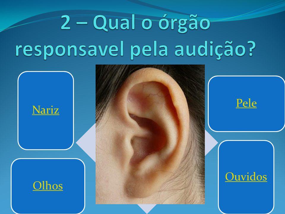 2 – Qual o órgão responsavel pela audição