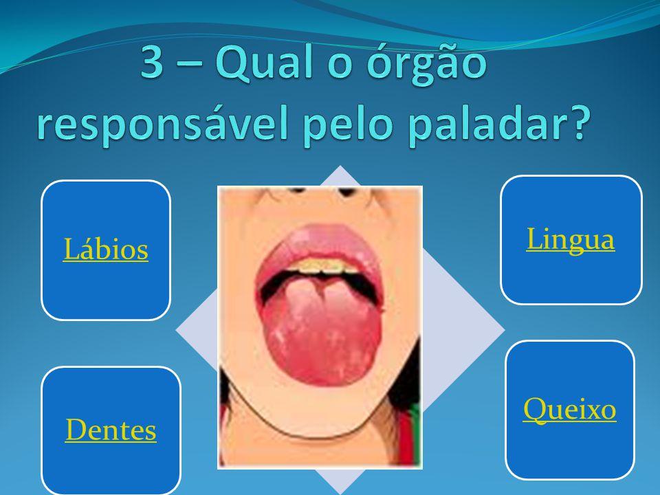 3 – Qual o órgão responsável pelo paladar