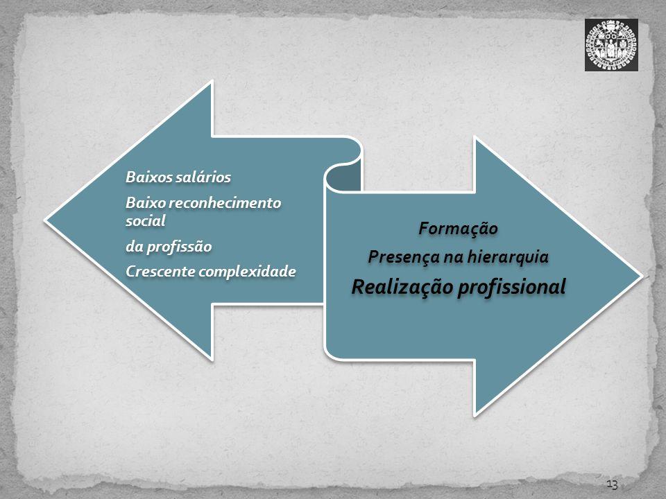 Presença na hierarquia Realização profissional
