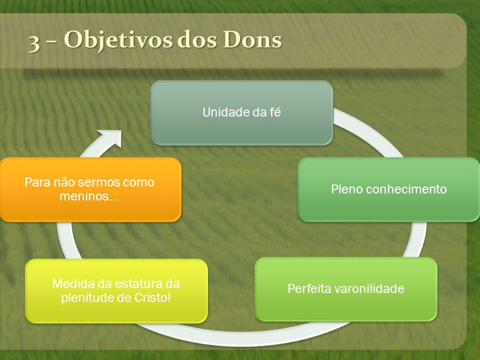3 – Objetivos dos Dons Unidade da fé Para não sermos como meninos...