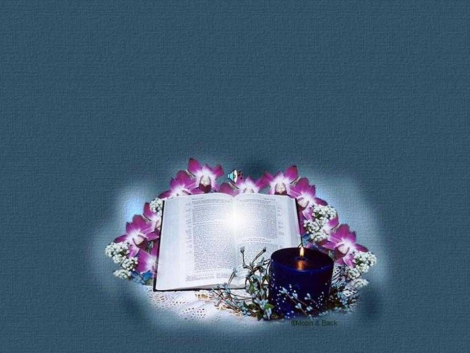 - A Bíblia é isso para você