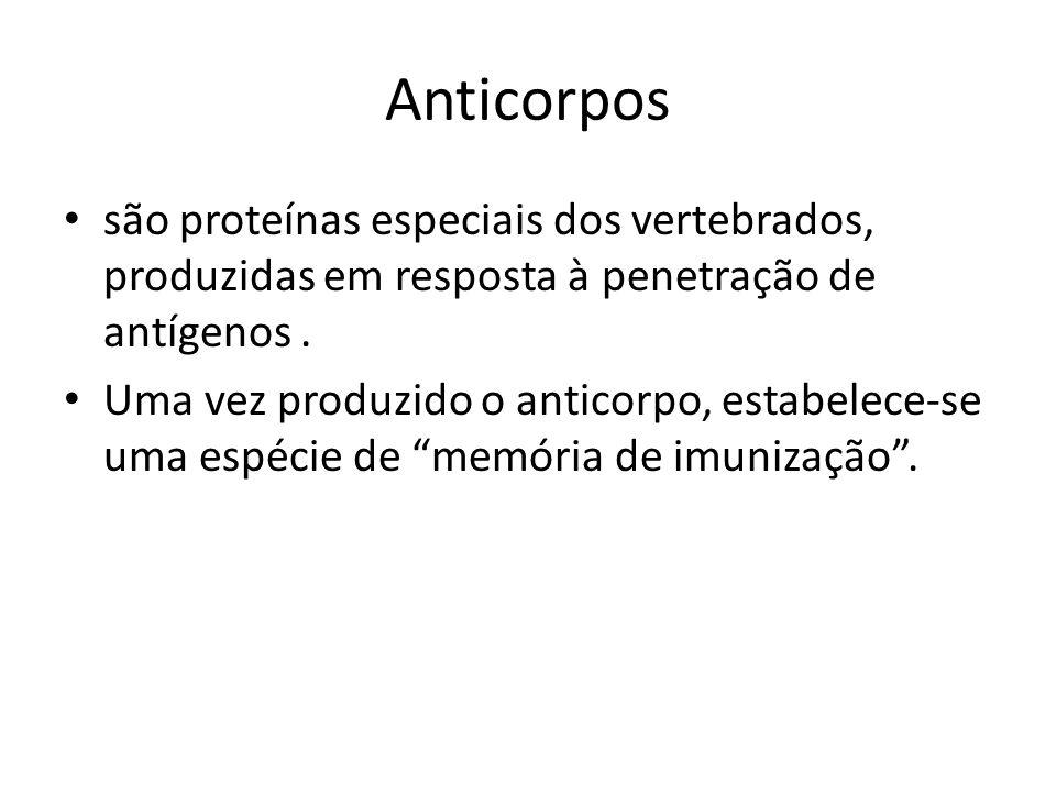 Anticorpos são proteínas especiais dos vertebrados, produzidas em resposta à penetração de antígenos .