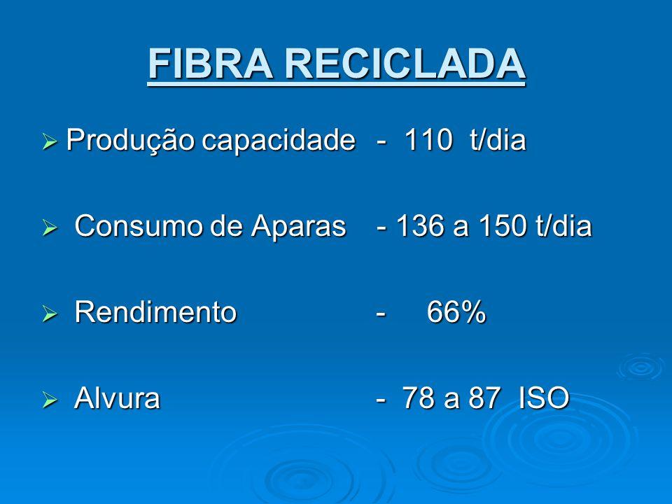 FIBRA RECICLADA Produção capacidade - 110 t/dia