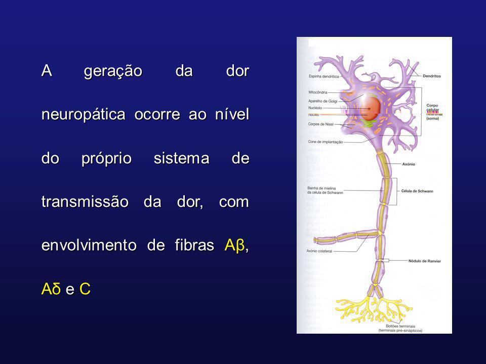 A geração da dor neuropática ocorre ao nível do próprio sistema de transmissão da dor, com envolvimento de fibras Aβ, Aδ e C