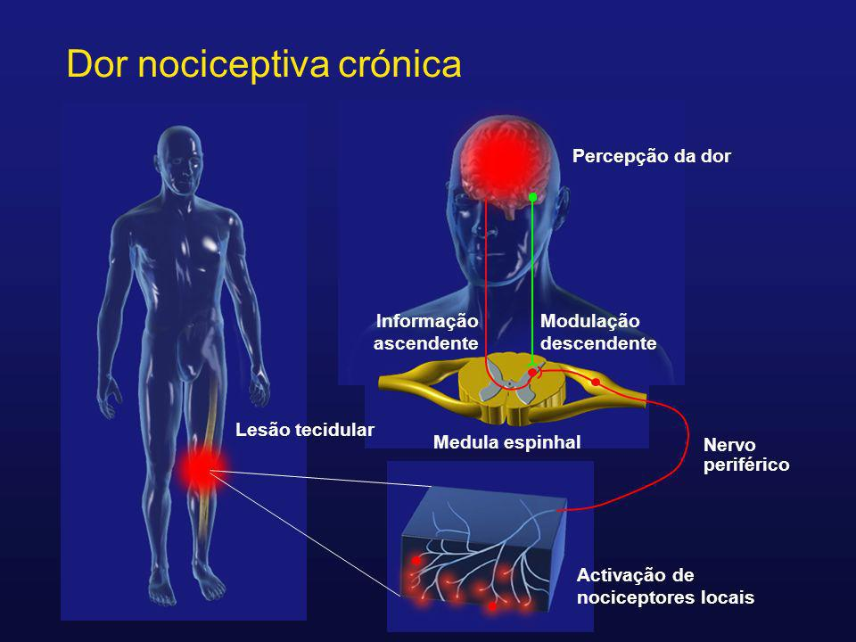 Dor nociceptiva crónica