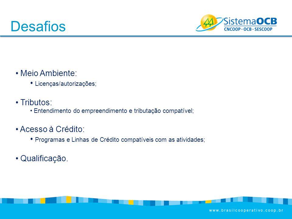 Desafios Meio Ambiente: Licenças/autorizações; Tributos: