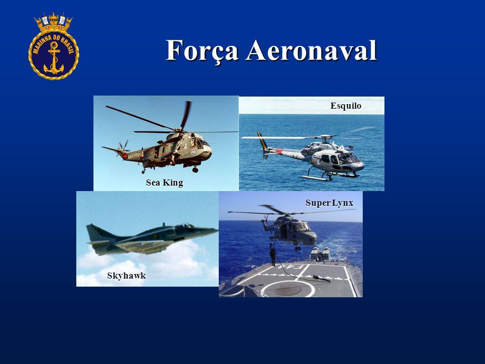Força Aeronaval Esquilo Sea King Super Lynx Skyhawk