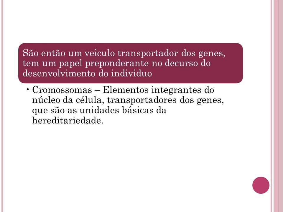 São então um veiculo transportador dos genes, tem um papel preponderante no decurso do desenvolvimento do individuo