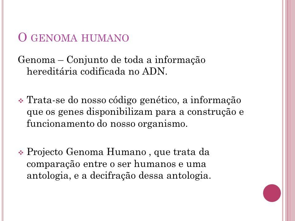 O genoma humano Genoma – Conjunto de toda a informação hereditária codificada no ADN.