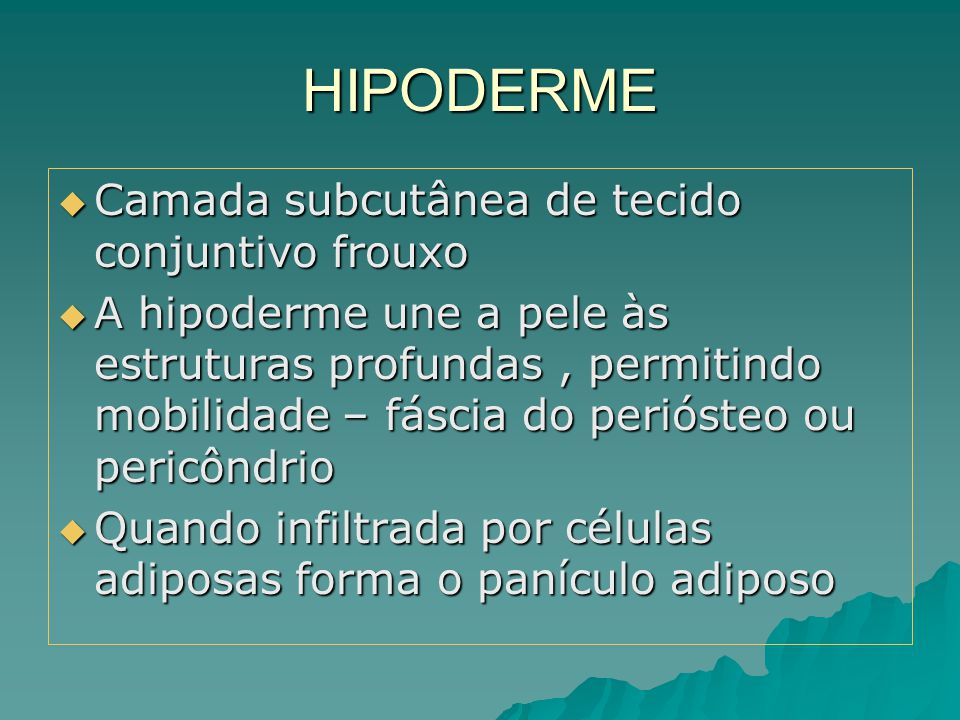 HIPODERME Camada subcutânea de tecido conjuntivo frouxo
