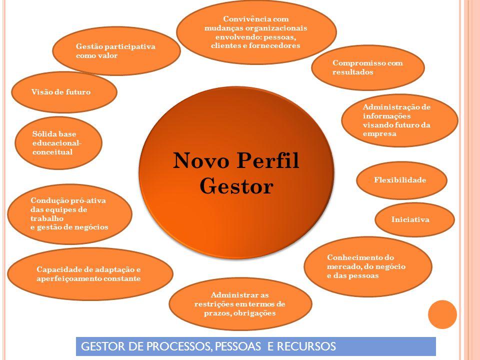 Novo Perfil Gestor GESTOR DE PROCESSOS, PESSOAS E RECURSOS