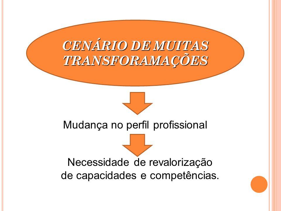 CENÁRIO DE MUITAS TRANSFORAMAÇÕES