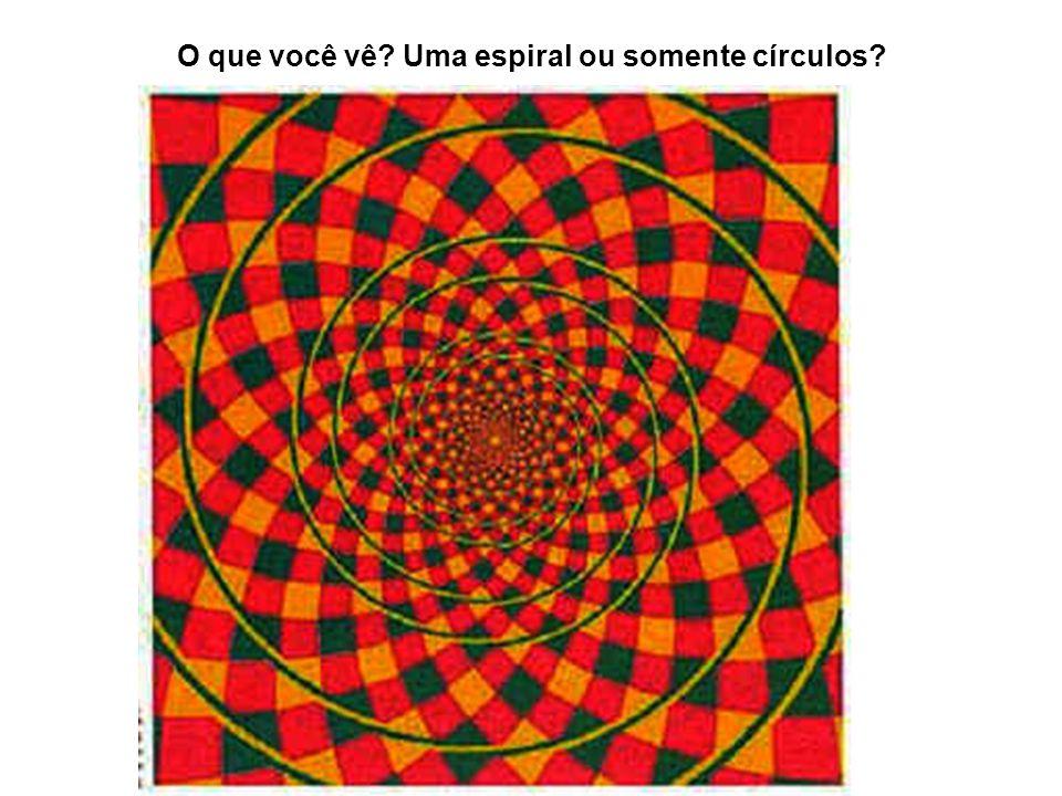 O que você vê Uma espiral ou somente círculos