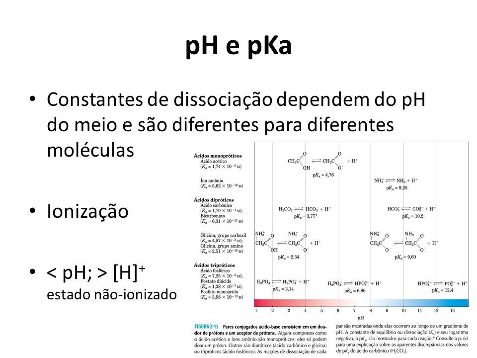 pH e pKa Constantes de dissociação dependem do pH do meio e são diferentes para diferentes moléculas.