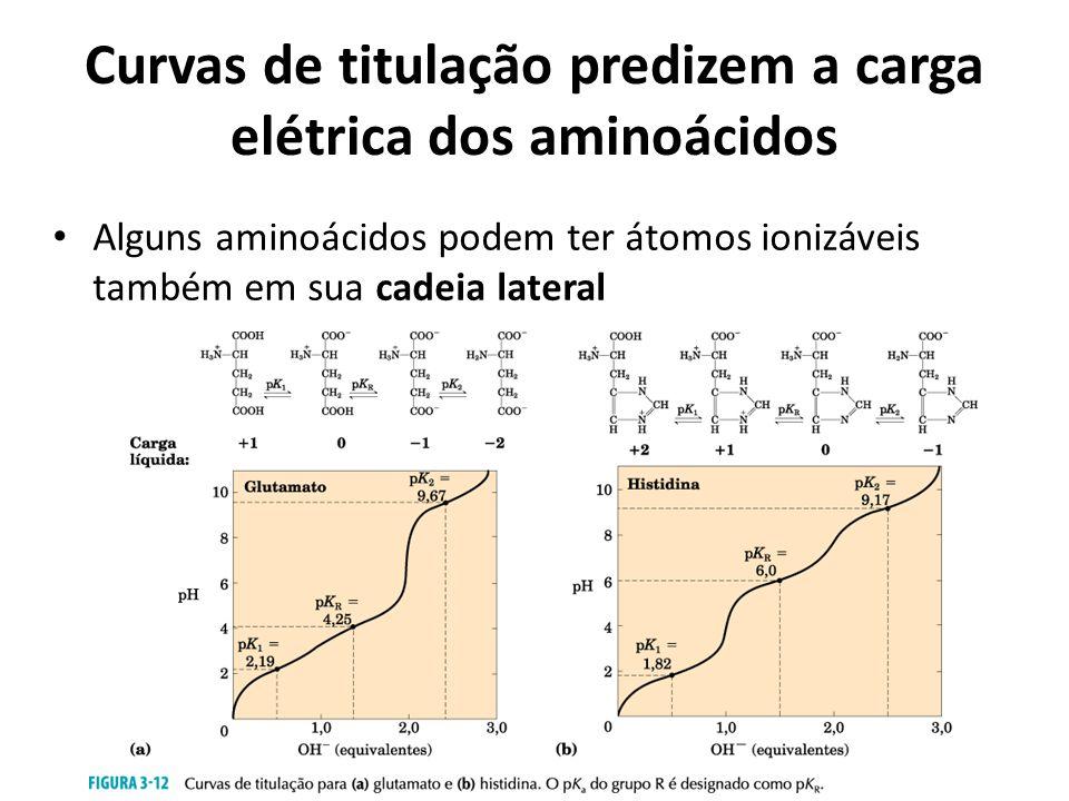 Curvas de titulação predizem a carga elétrica dos aminoácidos