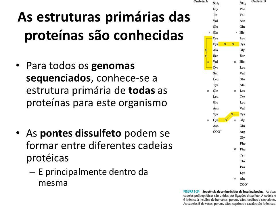As estruturas primárias das proteínas são conhecidas